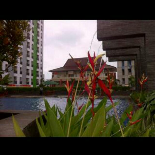 Apartment Murah Di Ciputat
