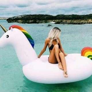 Huge Unicorn Floater