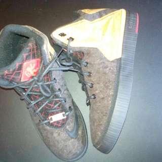Lebron Nikes New