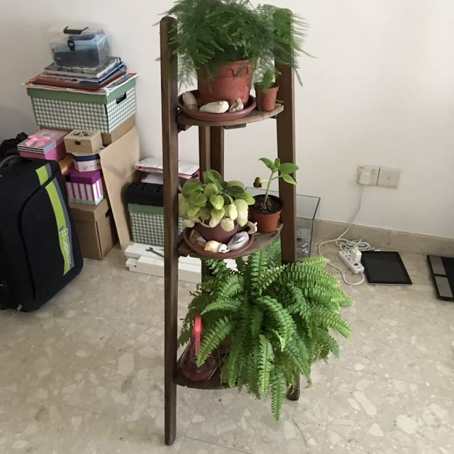 Plant / Flower Stand