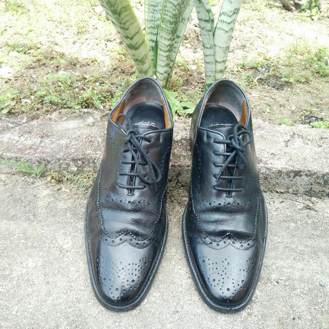 Wingtip Regal Imperial Grade