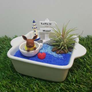 Love You, Mum! Eevee In A Bowl Air Plant