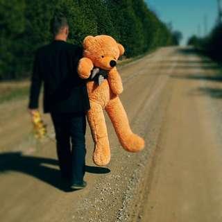 Brand New Giant Teddy Bears