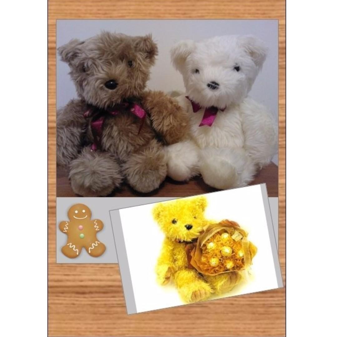#超取最好買#泰迪熊(單隻400)