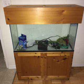 Fish Tank 38 Gallon