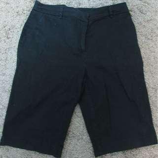 Womens Shorts/Capris Size 12
