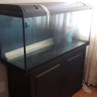 60 Gallon Fish Tank/ Aquarium With Pump Filter And Led Light