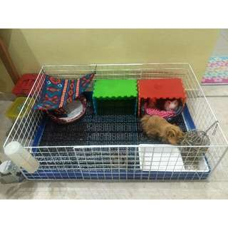 Hand Made House For Small Animals