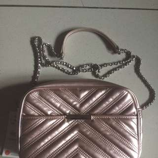 Zara Pink Metallic Bag