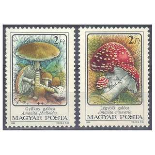 Stamp Set (Mushrooms)