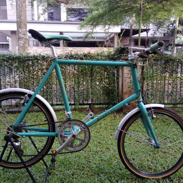 Bianchi Lepre Bicycle