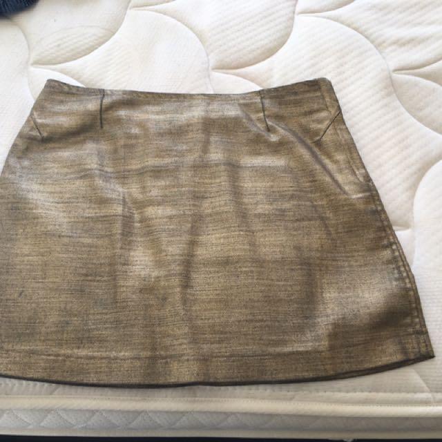 Gold Metallic Skirt