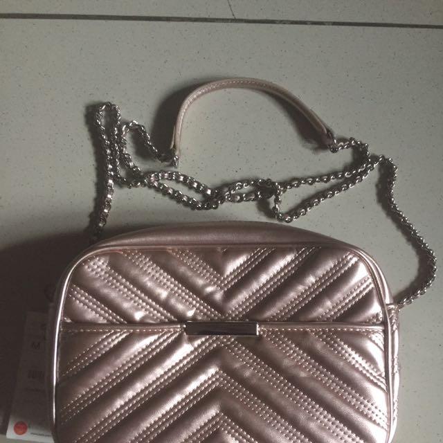 Zara Pink Metallic Bag