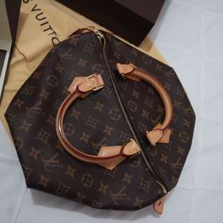 Louis Vuitton Speedy 30 in Monogram