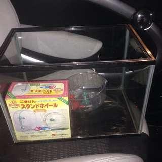Fish Tank (1 Feet)