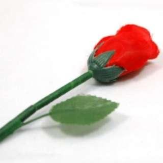 Appearing Rose Magic Trick