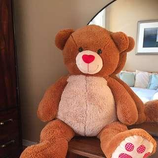 Life Size Teddy