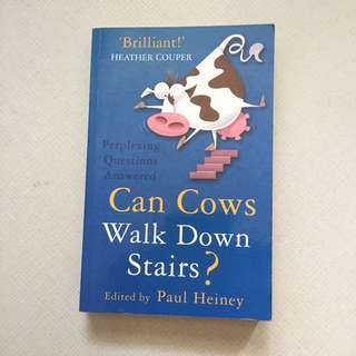 Perplexing Questions Answered: Can Cows Walk Down Stairs?
