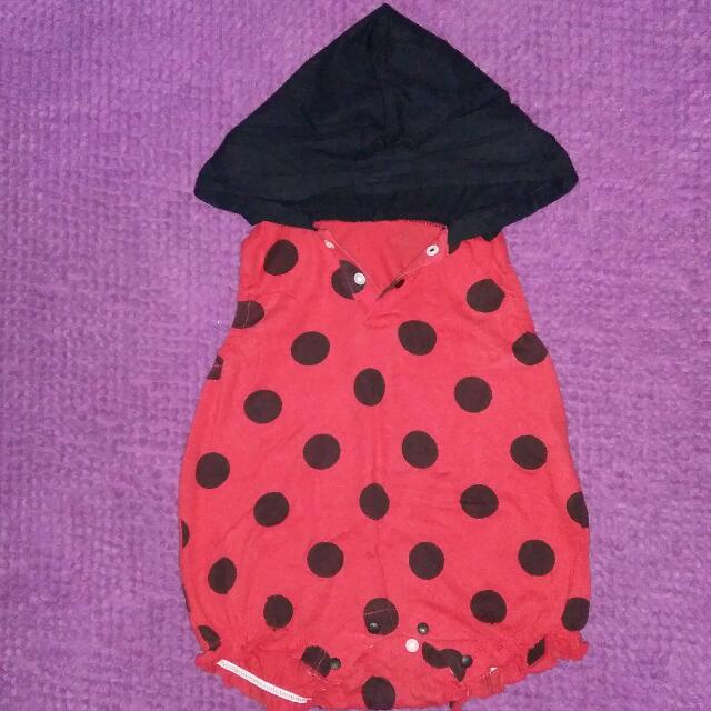 Jumper Motif Ladybug
