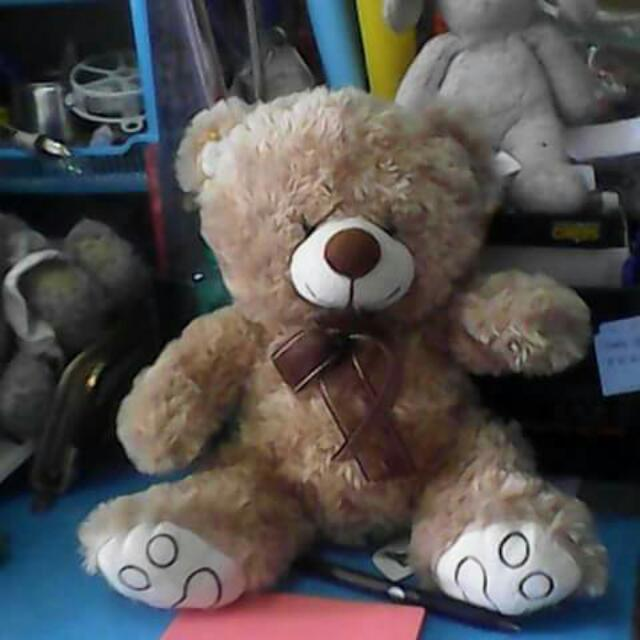 pre loved teddy bear