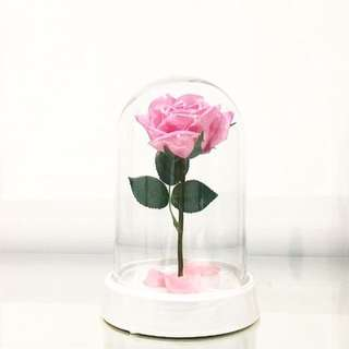 Rose Domes