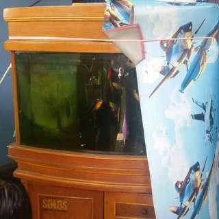 Aquarium Jati+ikan Mas