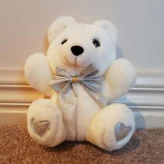 Small White Teddy Bear