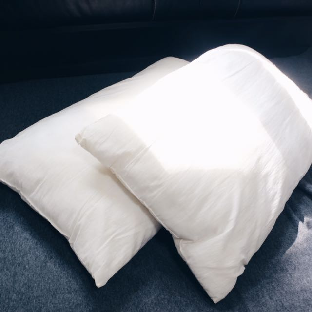 2 Pcs Pillow