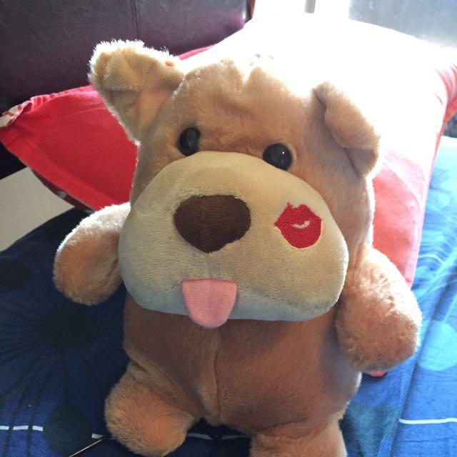 Cute Puffy Dog