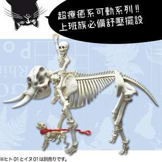 🚚 「Pose Skeleton 系列」療癒骷髏人 No.301 的大象日本限定 食玩 辦公桌小物 上班族最愛