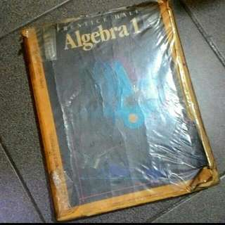 Algebra I Textbook