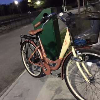 City bike And mountain Bike