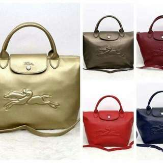 On Hand Authentic Longchamp Bags