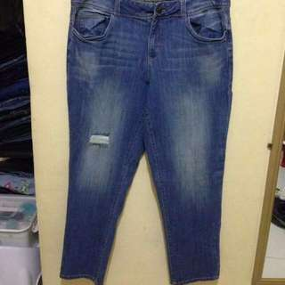 Plus size Jeans (American Rag)