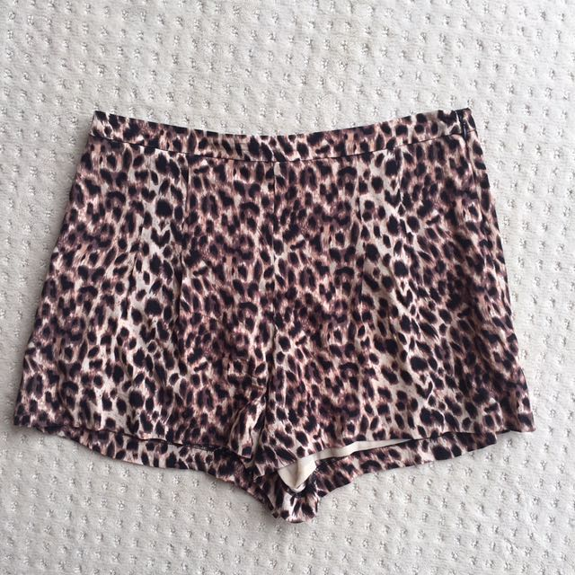 Gianni Bini Leopard Print Shorts Size M Au12