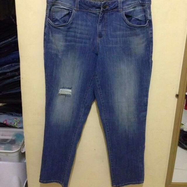 Plus size Jeans (American Rag)