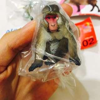 絕版 NTC 日本自然生命 仿真 擬真 獼猴 猴子 猩猩 第一代 動物圖鑑 轉蛋 扭蛋