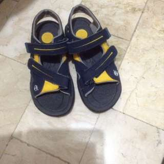 Blue With Yellow Accent Timberland Boy's Shoes