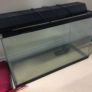 30 Gallon Tank With Heater, Filter, And Many More