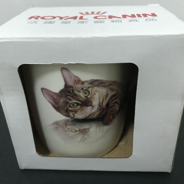 全新貓咪馬克杯#居家生活好物