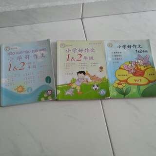 primary chinese enrichment book (use)