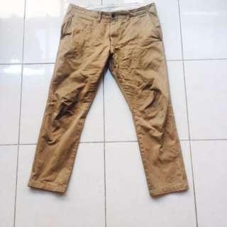 Uniqlo Slim Straight Chino Pants in Khaki