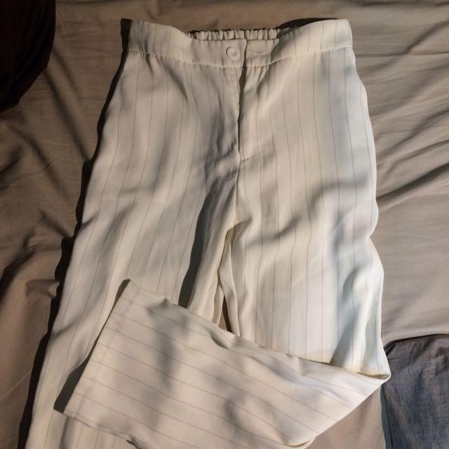 直紋雪紡西裝褲