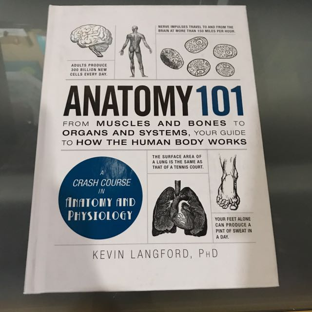Anatomy 101 From Muscles And Bones To Organs And Systems, Your Guide ...