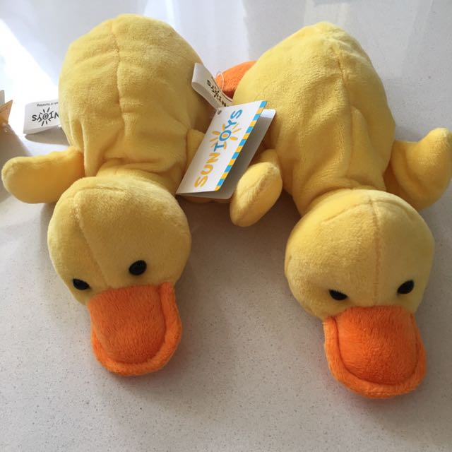 Brand New Duck Soft Toy, Toys & Games, Bricks & Figurines on Carousell