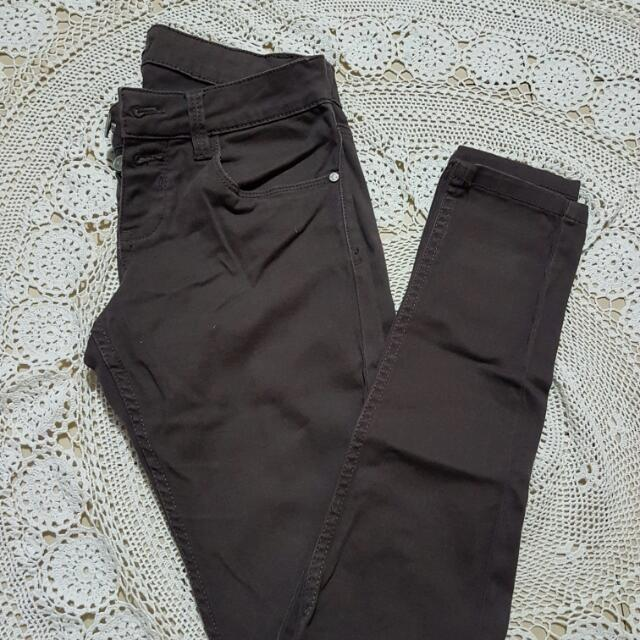 Terranova Chino Jeans (Dark Brown)