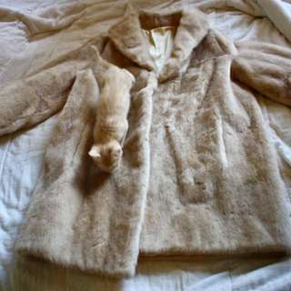 Faux Due Coat