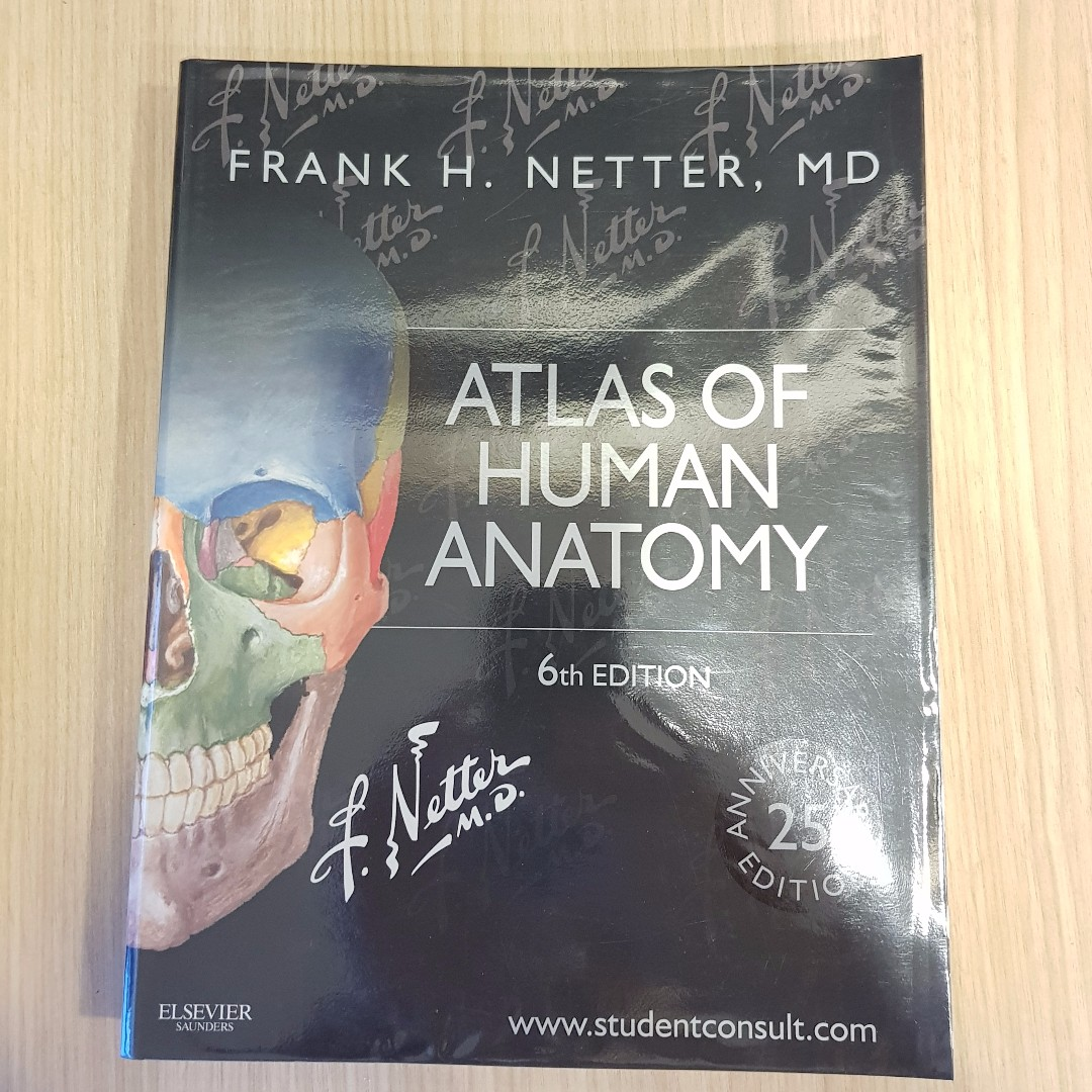 Netter\'s Atlas of Human Anatomy 6th Edition, Books & Stationery ...