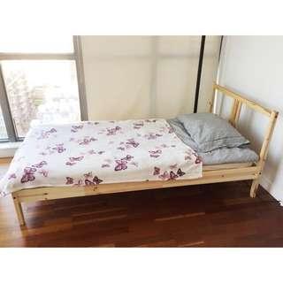SingleBed, Mattress&Bedding