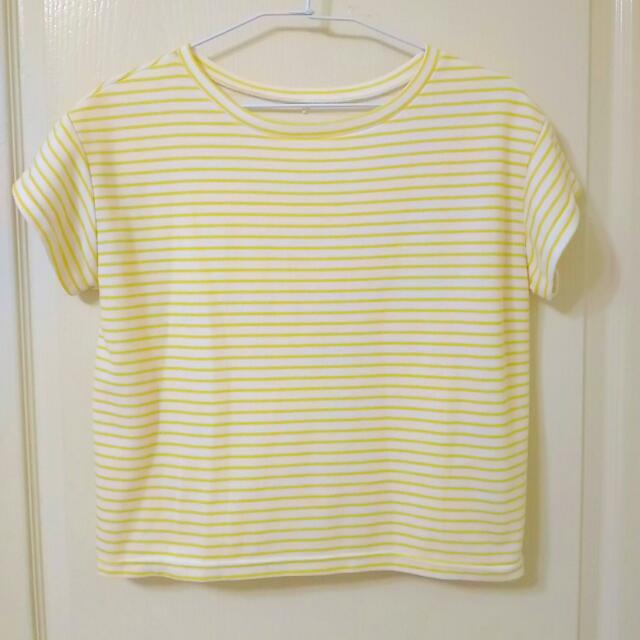 黃條紋短版上衣